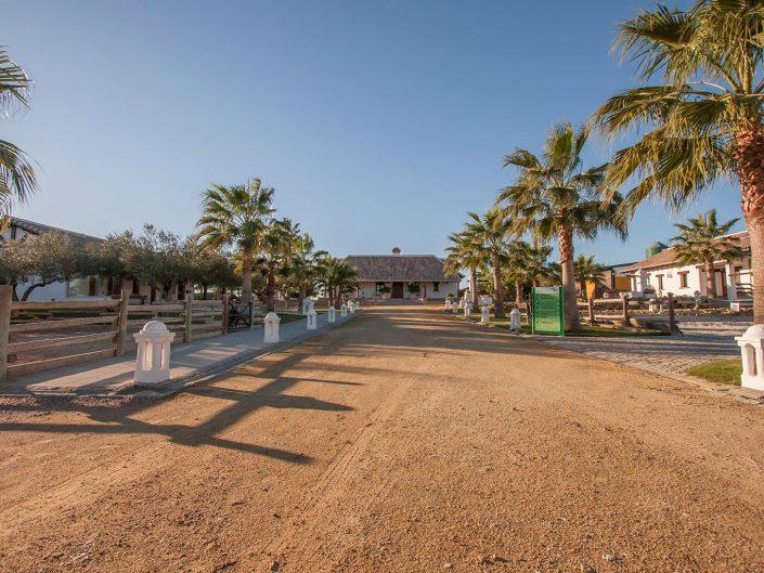 Finca junto al Parque de Doñana